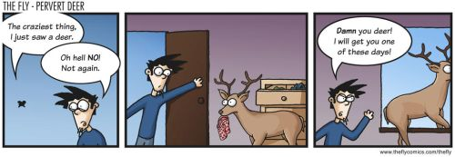 The Fly - Pervert Deer by burthefly