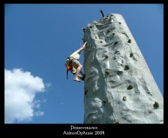 Perseverance by Aideon