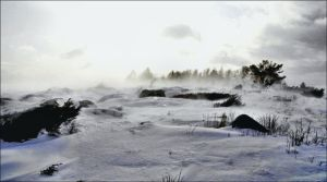 Snow Storm In Arcipelago December 15st Afternoon by eskile