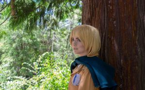 Armin Arlert: The Strategist by AnyaPanda