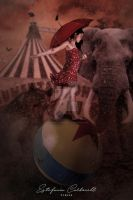199 - Circus by estefaniacarbonell