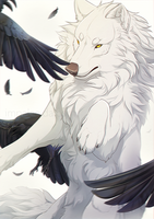 White fur, Black feathers by impalae