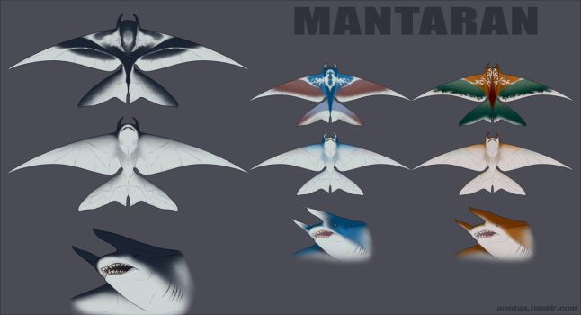 Mantaran type [concept drawing] by AniutqaART