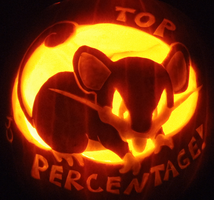 TOP PERCENTAGE PUMPKIN