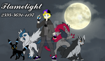 Trainer Card by Flamelight-Dash