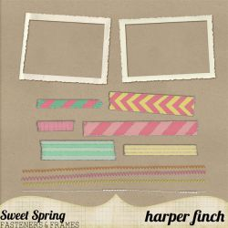 Sweet Spring Fasteners and Frames by harperfinch
