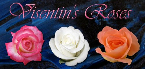 Visentin's Roses by shiftercat