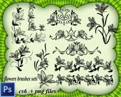 Flowers Brushes Sets by roula33
