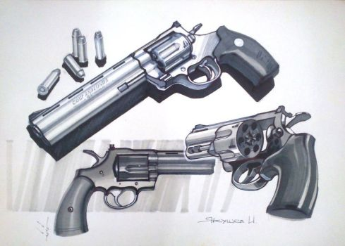 Colt Python and Anaconda by vombavr
