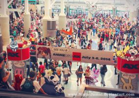 Wild Pokemon Anime Expo 2013 Finale