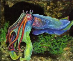 Giant Cuttlefish by SackofWetRabbits