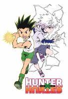hunter x hunter poster by titan9393