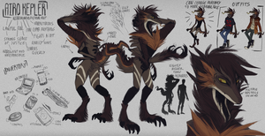Airo reference sheet 2018 by hamusson