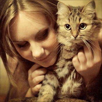 Little Cat by StacyD