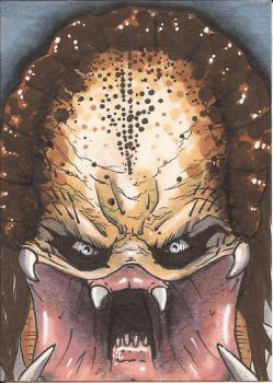 The Predator Sketch Card by Ross-A