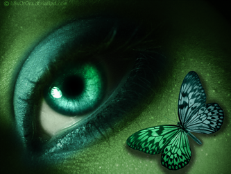 Enchanted Butterfly by LT-Arts