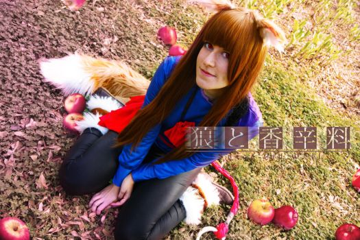 Spice and wolf - Apples by Sparkly-Monster