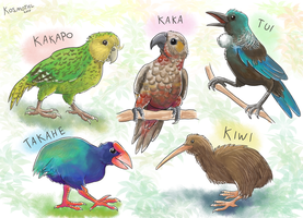 New Zealand Birds by Kosmotiel