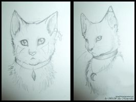 Two sketches by WingOfWind