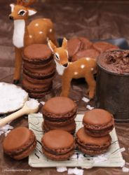 Chocolate and Salted Caramel Macarons by theresahelmer
