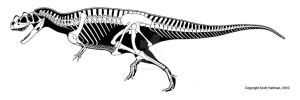 3-horned theropod by ScottHartman