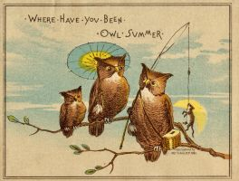 Where Have You been Owl Summer by Yesterdays-Paper