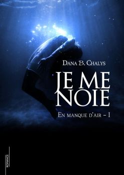 Je me noie by Sedenta