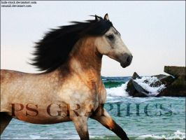 Dun Warmblood Premade by PS-Graphics