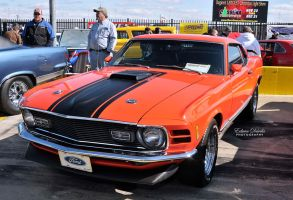 351 Ford Mustang by E-Davila-Photography