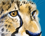 Cheetah detail speedpaint by Uzuri