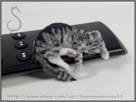 Kitty Nap by Teensyweensybaby