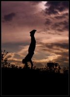 Silhouette by Intrepidity87