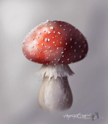 Mushroomfinal Copy by Therena-C-Art