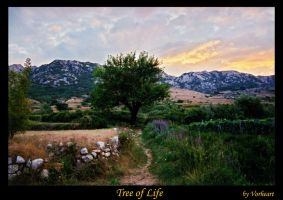 Tree of Life by Vorheart