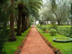 Bahai Gardens by MyArtself