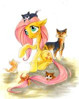 Flutty and the spice kittens by Imanika