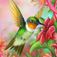 Layer Paint Ruby Throated Hummingbird by charfade