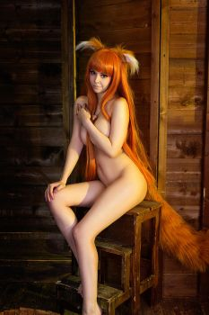 Spice and Wolf - Holo the Wise Wolf cosplay by Disharmonica