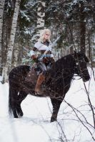 The Witcher cosplay - Ciri and Kelpie by ver1sa