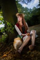 Spice and Wolf - Horo [Artbook-Cover] by theDevil-photography