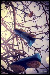 Leaf of shoes by Yunan