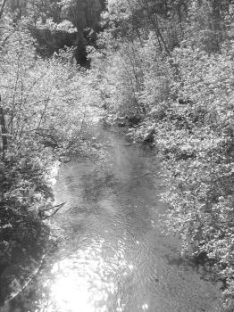 Shimmering Creek by deadeye-stock