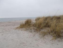 Welcome to the Baltic Sea 4 by silverbullet72