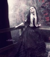 .: The Black Rose :. by Pure-Poison89