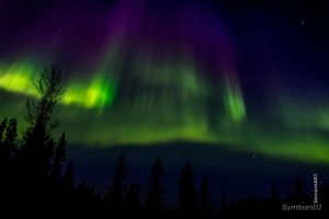 Northern Lights~2 by symbiandj
