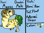Coricary Reference: Maxus by ZoeChickenFarmer