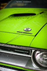 Cuda Detail by AmericanMuscle