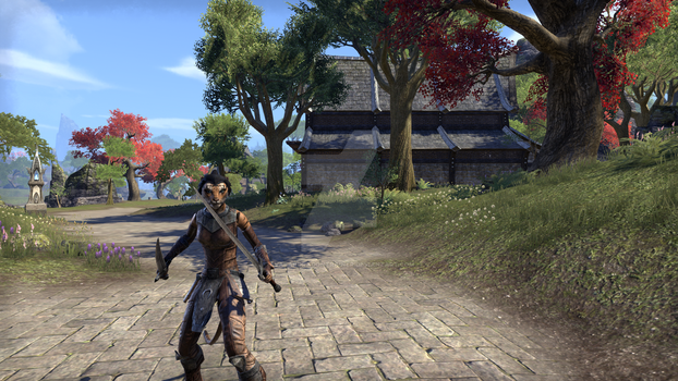 My Elder Scrolls Online Character by Avatardragontrainer