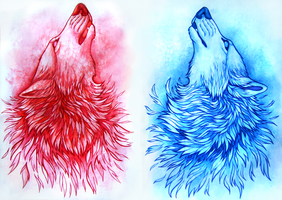 Red and Blue by TransparentGhost