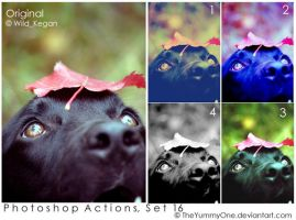 Photoshop Actions, Set 16 by TheYummyOne